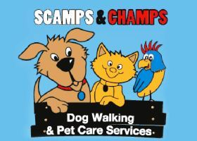 Scamps & Champs Business - Pet Care Franchise